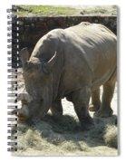 Rhino Eating Spiral Notebook