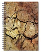 Rhinoceros From Chauve Cave Spiral Notebook