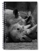 Rhinos Spiral Notebook