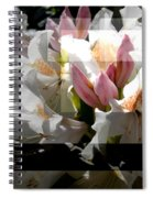 Rhododendron Collage Spiral Notebook