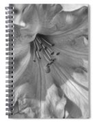 Rhododendron In Black And White Spiral Notebook