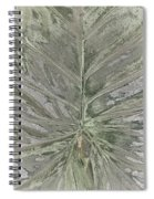 Rhododendron Leaf Spiral Notebook