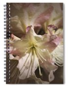 Rhododendron Mary Fleming Spiral Notebook