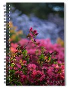 Rhododendron Pink Dream Spiral Notebook