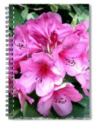 Rhododendron Square With Border Spiral Notebook