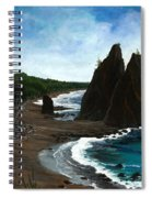 Rialto Beach Wa Spiral Notebook
