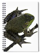 Ribbeting Frog In A Bucket Spiral Notebook