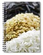 Rice Colors Spiral Notebook