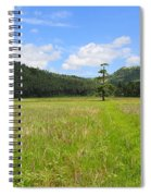 Rice Field Spiral Notebook