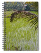 Rice Paddy Spiral Notebook