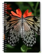 Rice Paper Butterfly Elegance Spiral Notebook
