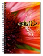 Rich Reward Spiral Notebook