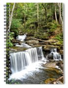 Ricketts Glen Delaware Falls Spiral Notebook