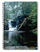 Ricketts Glen Falls 016 Spiral Notebook