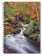 Ricketts Glen Falls Spiral Notebook