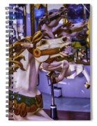 Ride The Wild Carrousel Horses Spiral Notebook