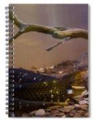 Ridgenosed Rattlesnake 3 Spiral Notebook