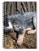 Ridiculously Cute Spiral Notebook