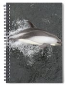 Riding The Bow Spiral Notebook