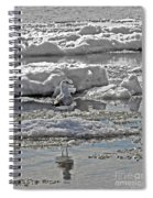 Riding The Ice Flow  Spiral Notebook