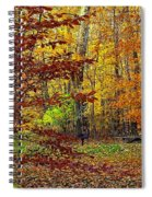 Right Place Right Time Spiral Notebook