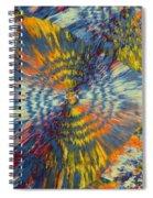 Rings Of Jasper Spiral Notebook