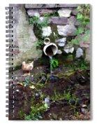 R.i.p. Nature Spiral Notebook