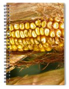 Ripe Corn Spiral Notebook