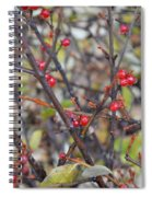Ripe For The Picking Spiral Notebook