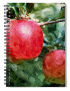 Ripe Red Apples On Tree Spiral Notebook
