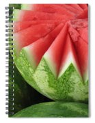 Ripe Watermelon Spiral Notebook