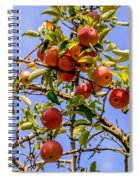 Ripening In The Sun Spiral Notebook