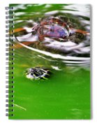 Rippled Green Spiral Notebook