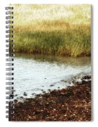 Rippled Water Rippled Reeds Spiral Notebook