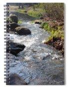 Rippleing Stream Spiral Notebook