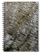 Ripples In The Swamp Spiral Notebook
