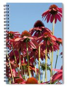Rise Above All Spiral Notebook