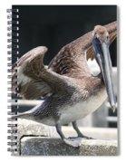 Pier Pelican Spiral Notebook