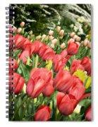 Rising Spring Spiral Notebook