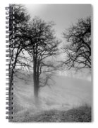 Rising Mists In The Bald Hills Spiral Notebook