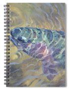 Rainbow Rising Spiral Notebook