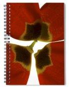 Rittenhouse Tulip I Spiral Notebook