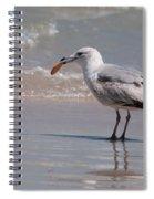 Ritz Spiral Notebook