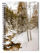 River And Path Spiral Notebook