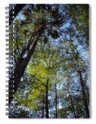 River Bend Park 3 Spiral Notebook