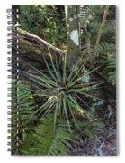 River Bend Park 4 Spiral Notebook