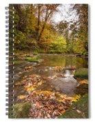River Blyth In Autumn Vertical Spiral Notebook