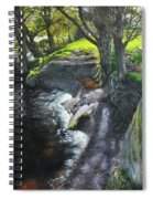 River Dee At Rhug Spiral Notebook