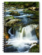 River Flowing Through Woods Spiral Notebook