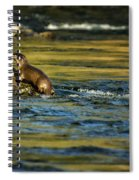 River Otter On A Rock Spiral Notebook